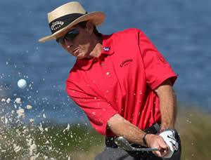 David Leadbetter taking a swing